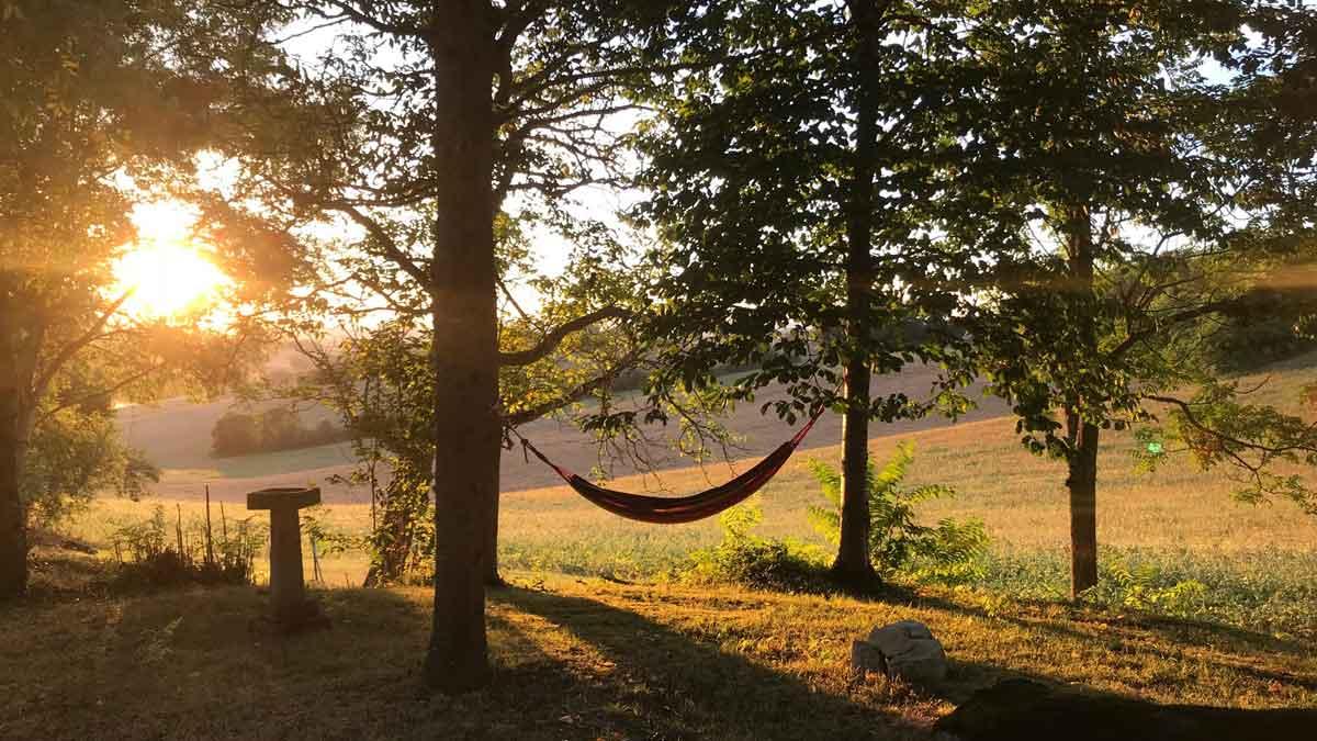 hammock-02.jpg