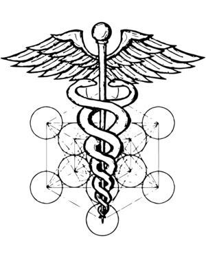 The Symbol   The self–reflecting twin snakes  Ida  &  Pingala , in eternal dance. Their monadic unification is derived from the  rod of Hermes  ( a.k.a.   Thoth ,  Enoch ,  Idris ,  &c —  a key figure in ancient  Kemet ).  This image is then placed upon what is known as   Metatron's Cube   — which is the simplest geometric expression of all known forms of the  Platonic solids .  Note that the snakes cross paths in  7  different places —an eternal, recursive, and self–referential pattern.    The Meaning   μετά (meta, prefix): a concept that is an  abstraction  behind another concept, used to complete or add to the latter.    e.g.   Metadata. Metamorphosis. Meditation. Metallic. Medication. Mediation. Medical. Metaphysics.