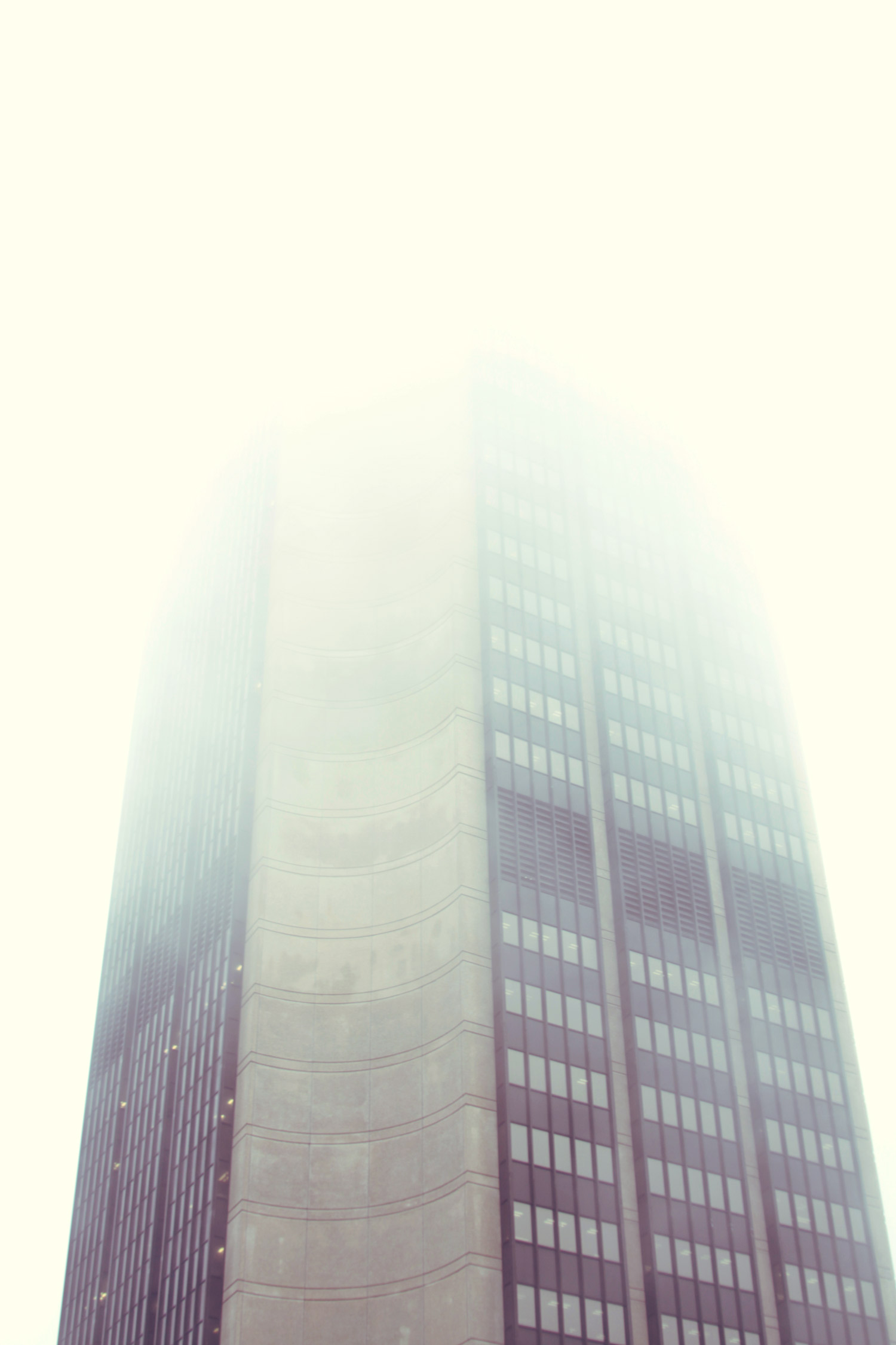 Foggy-Monroe.jpg