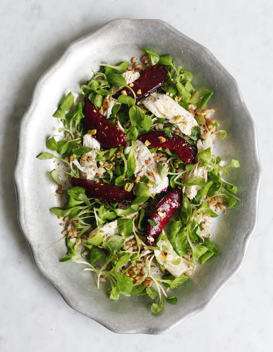 Poached Chicken and Plum Grain Salad for Lonny Magazine