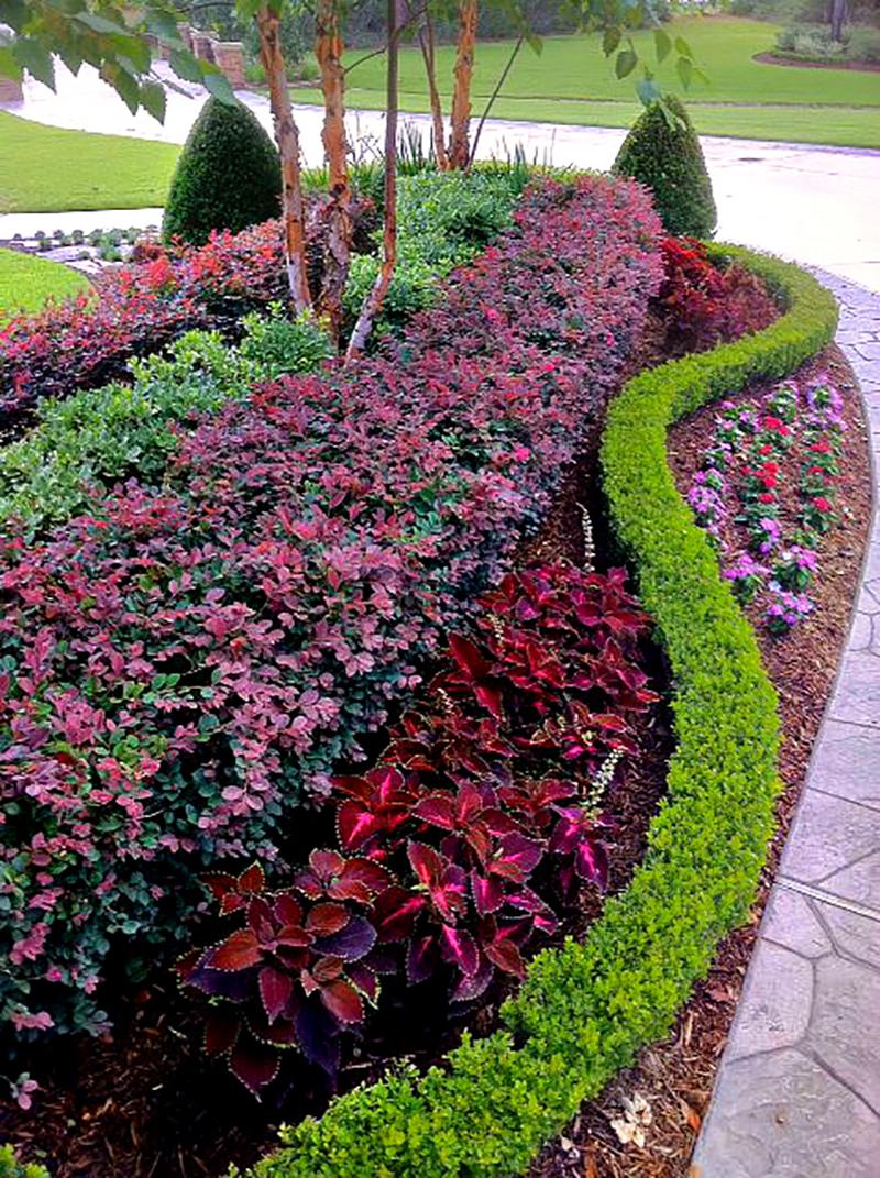 ab-landscape-maintenance-install-design-irrigation-sprinklers-lawn-care-the-woodlands-magnolia-best-envy-exteriors-houston-tx-.jpg