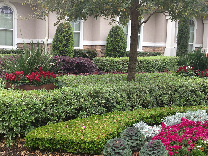 english-formal-hill-country-rustic-landscape-ideas-landscaping-best-landscaper-installer-installation-custom-design-luxury-install-spring-houston-lawn-care-service-top-montgomery-cypress.jpg