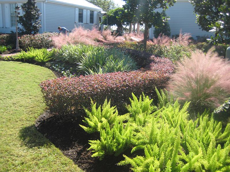 Fertilization-maintenance-landscape-lawn-design-the-woodlands-cypress-magnolia-spring-best.jpg