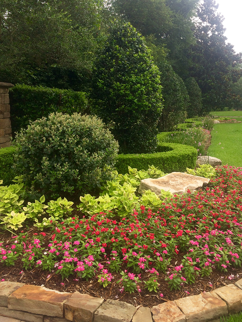 formal-landscape-design-designer-architect-landscaper-landscaping-lawn-lawn-care-lawn-maintnenance-the-woodlands-spring-houston-landscape-lighting-best-new-top-carlton-woods-montgomery-boxwood-hedge.jpg