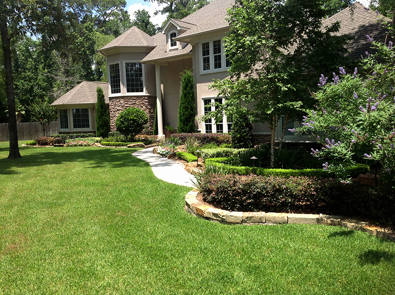 formal-planting-with-vitex,-river-birch,-loropetalum,-iris,-boxwood,-seasonal-color-and-stack-stone,-Magnolia-Texas.jpg