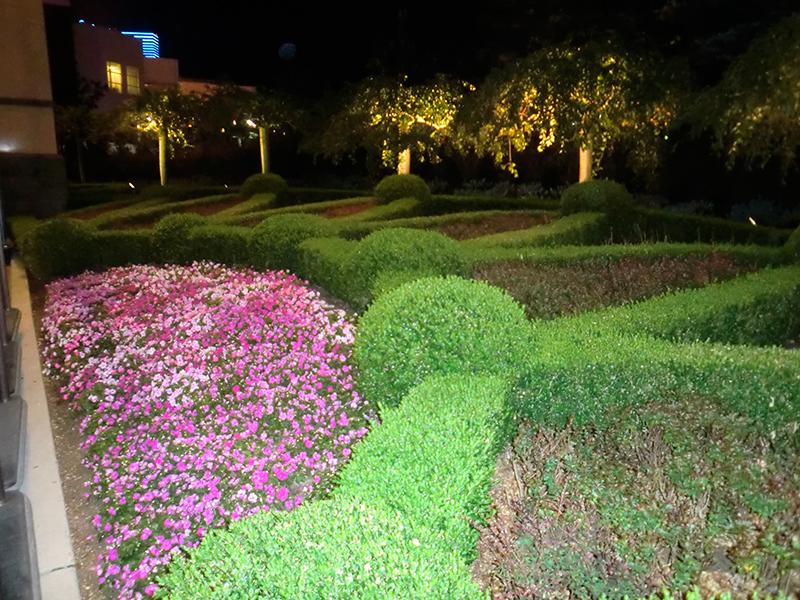 landscape-design-commercial-lighting-maintenance-the-woodlands-houston-spring-conroe-envy-exteriors.jpg