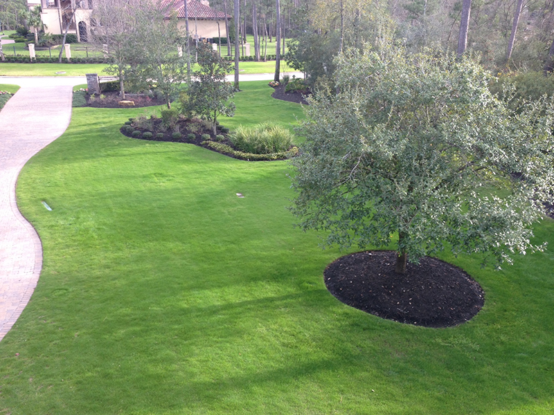 lawn-care-maintenance-fertilization-mow-service-lawn-landscaper-landscaping-company-the-woodlands-tx-houston-carlton-woods-spring-conroe-montgomery-woodforest-best-luxury-new-cypress.jpg