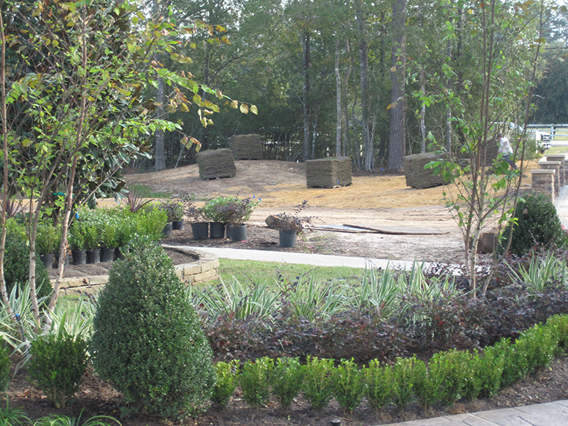 new-construction-home-landscape-design-install-sod-zoysia-landscaper-installation-design-designer-installer-best-top-company-lawn-the-woodlands-spring-magnolia-houston-cypress-north-conroe-montgomery-woodforest.jpg