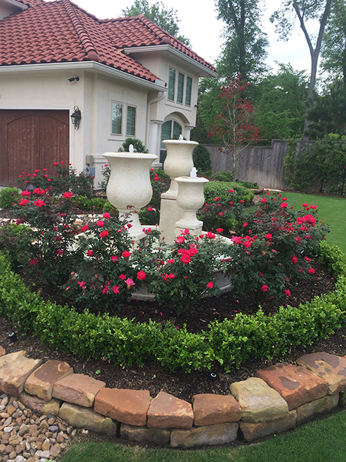 formal-landsacpe-outdoor-fountain-living-roses-boxwood-custom-maintenance-the-woodlands-spring-tomball.jpg