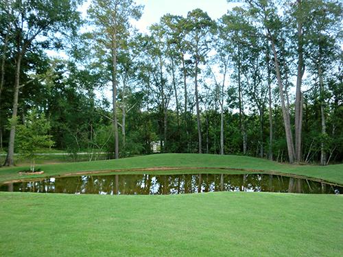 pond-lake-burm-zoysia-landscape-envy-magnolia-the-woodlands-conroe.jpg