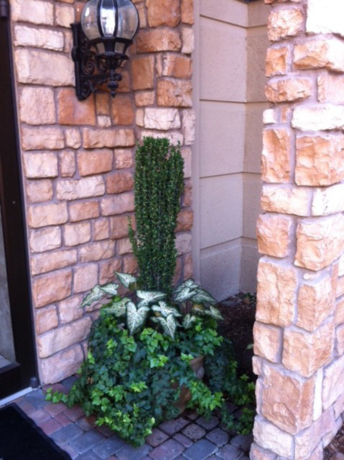 sky-pencil-pot-planter-urn-commerical-door-entry-installed-installation-landscaper-best-top-landscaping-romantic-ideas-professional-insured-the-woodlands-houston-spring-magnolia-conroe-montgomery-cypress-galleria-memorial.jpg