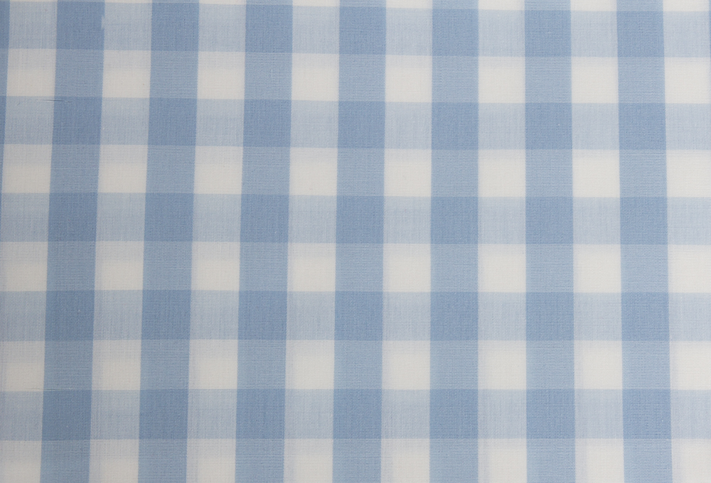 180RJ030 - Gingham - Light Blue.jpg