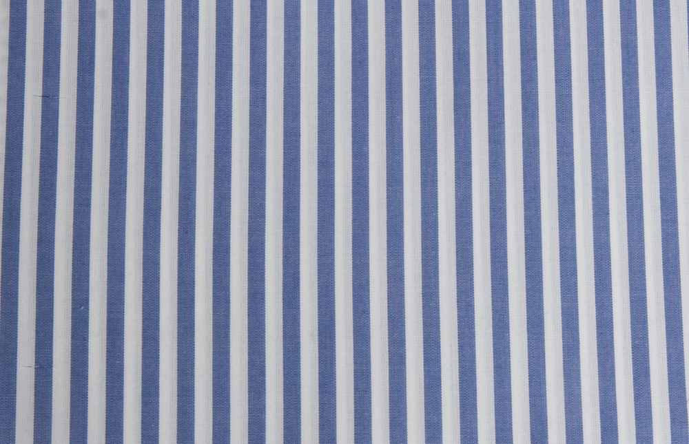 Bengal Stripe - Blue.jpg