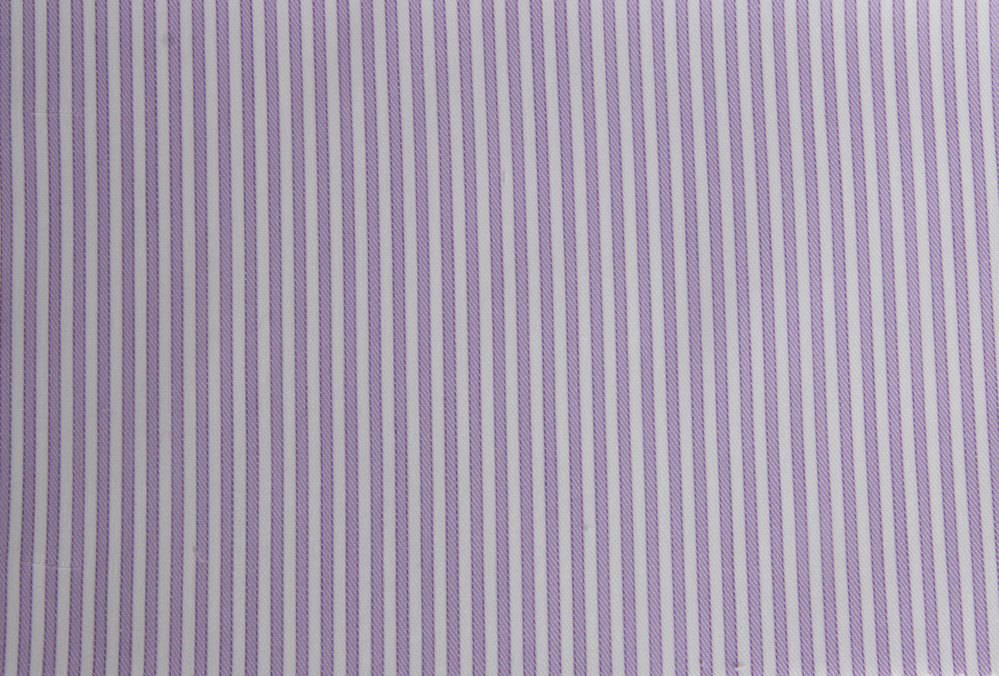 Dress Stripe with Border - Purple.jpg