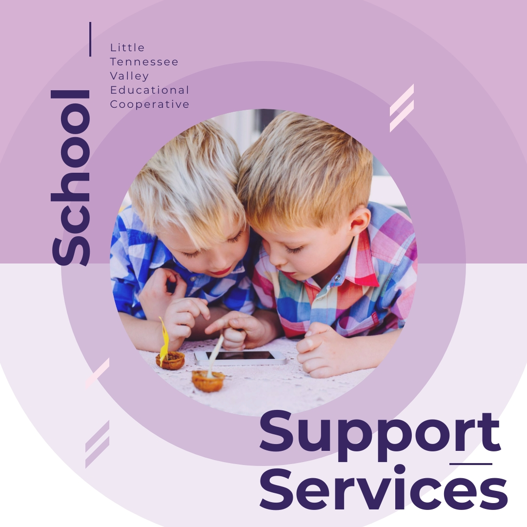 School Support Services - LTVEC offers a wide variety of school support services to local school systems, including: Occupational Therapy, Physical Therapy, Vision Services, Social Work, School Psychology, Speech Language Therapy, Professional Development, Medicaid Reimbursement Services, and Interpreter Services.