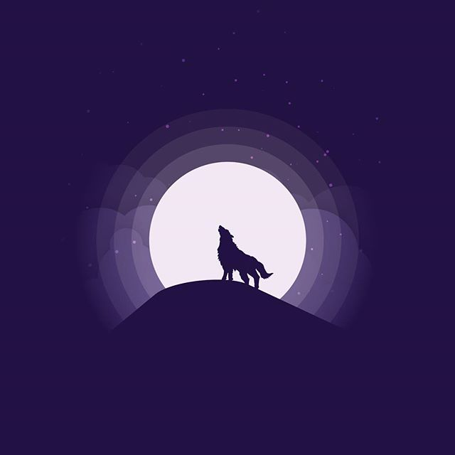 Wolf at Night  This week we have circular moon designs, inspired by @madebymarko. A calming view of the night sky in three different color schemes. Enjoy.  #wolf #fullmoon #moon #design #vector #art #flat #illustration #illustrator #adobe #vectorart