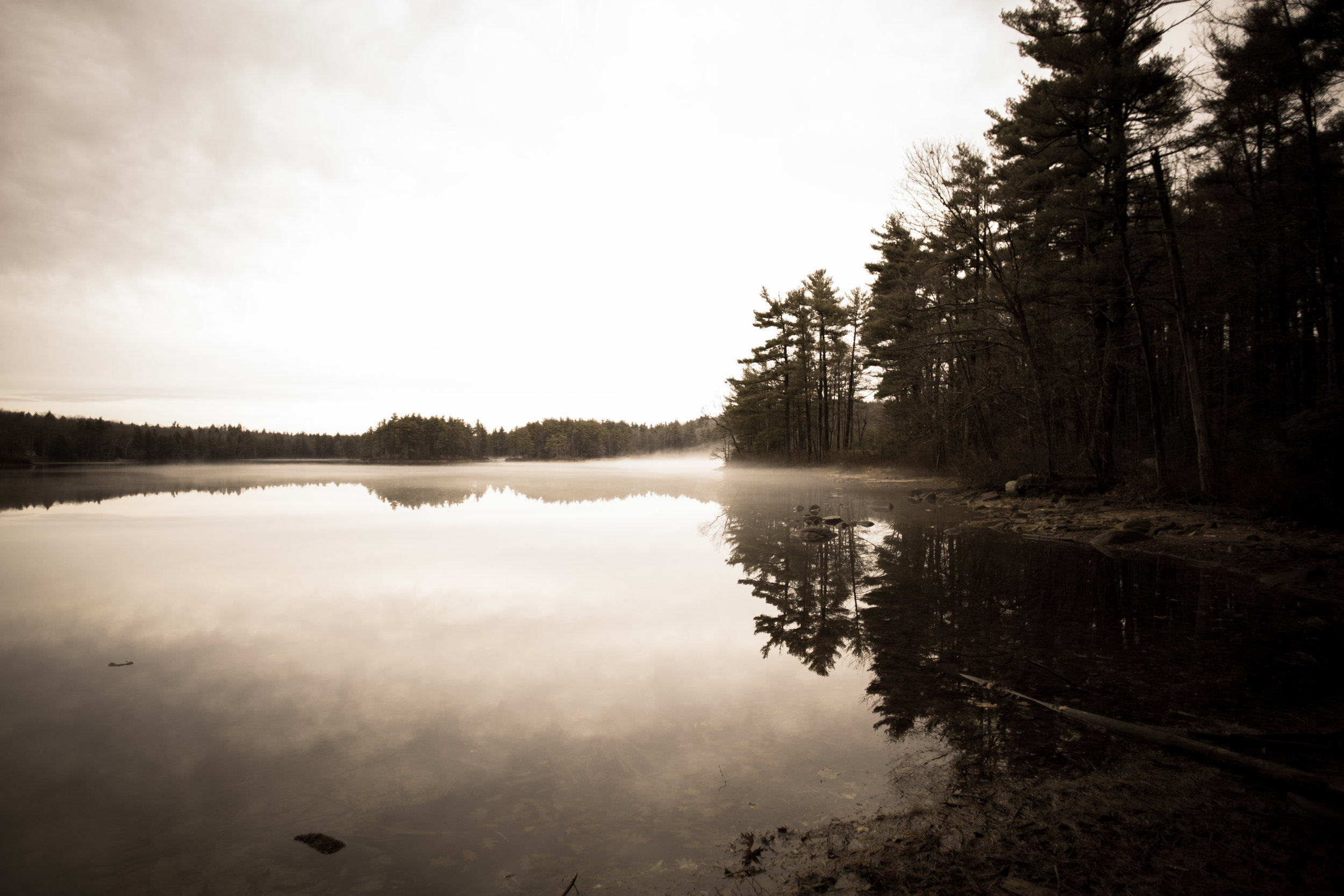 Foggy Pond