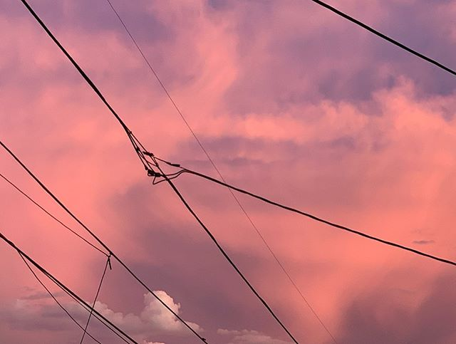 Yesterday evening before the downpour 🌧 🌵 💗 . . . . #sunset #storm #arizonasunset #nofilter #photography #clouds #tempe #arizona #monsoon #powerlines #rain #backyard