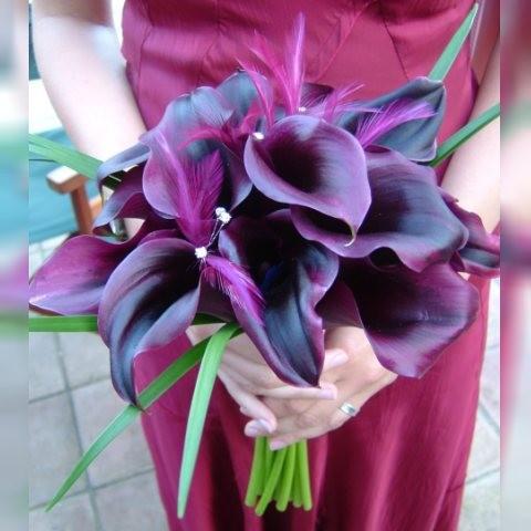 purplil.jpg