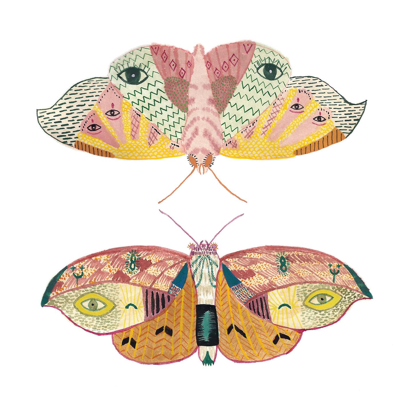 two moths 200dpi.jpg