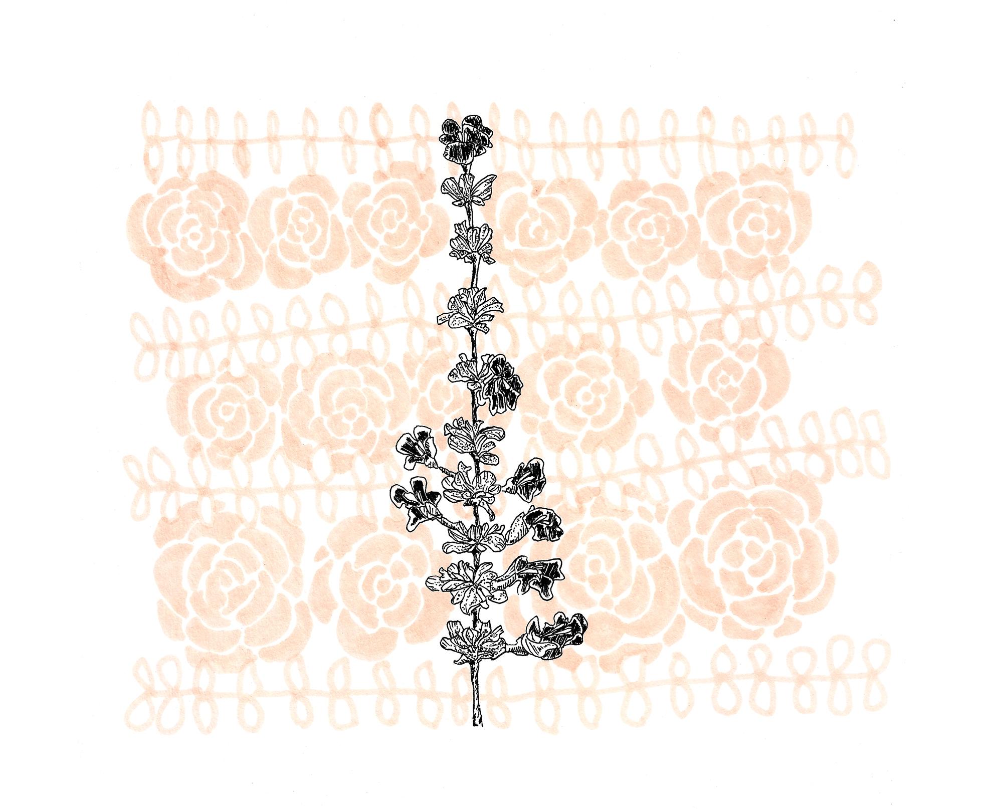 roses back 200dpi.jpg
