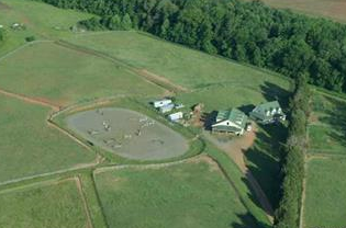 Culpeper*HORSE FARM*30 Acres-Breeding facility