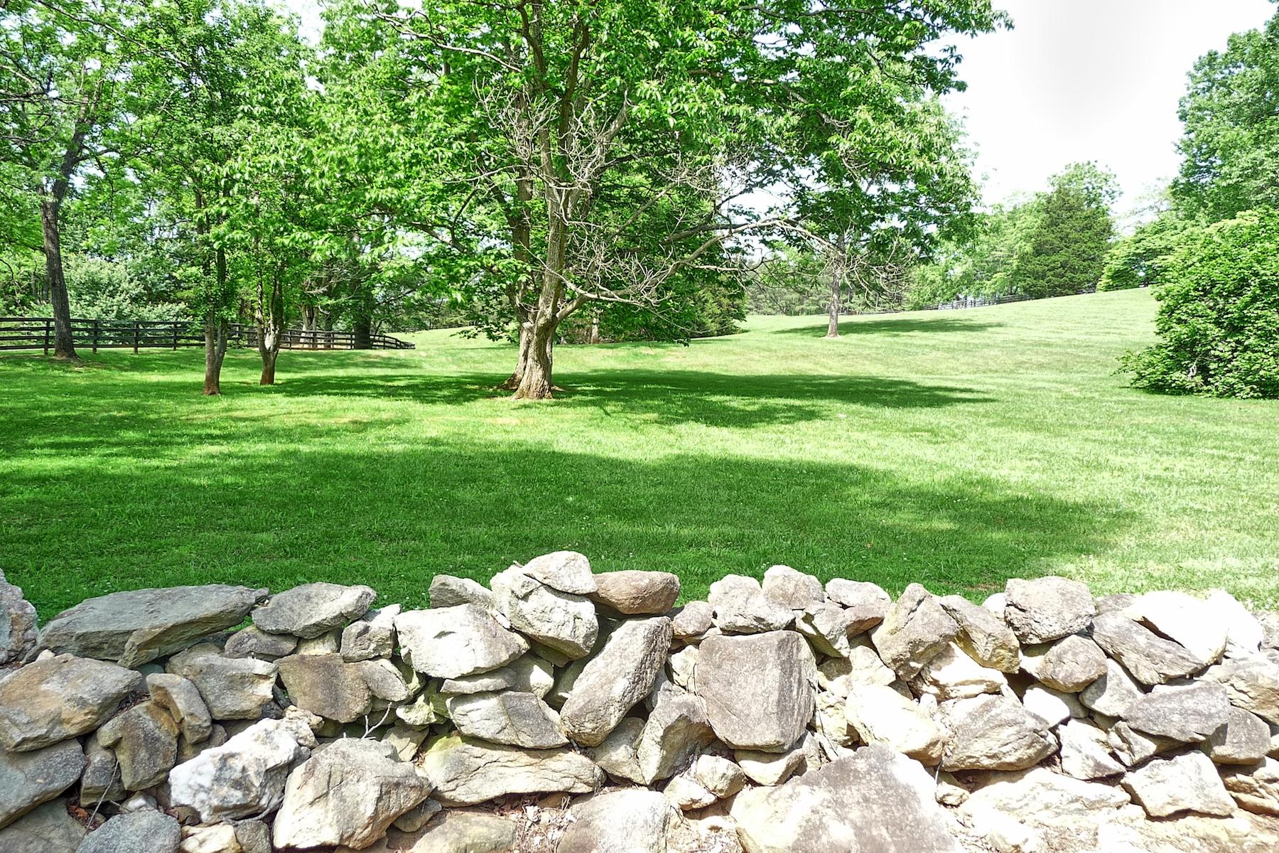 Castle Mtn. Stone wall front field.jpg