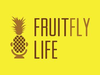 Jennifer Baumgardner: The Third  Wave Feminist's Thoroughly  Modern Appeal   Fruit Fly Life , 4/19/11