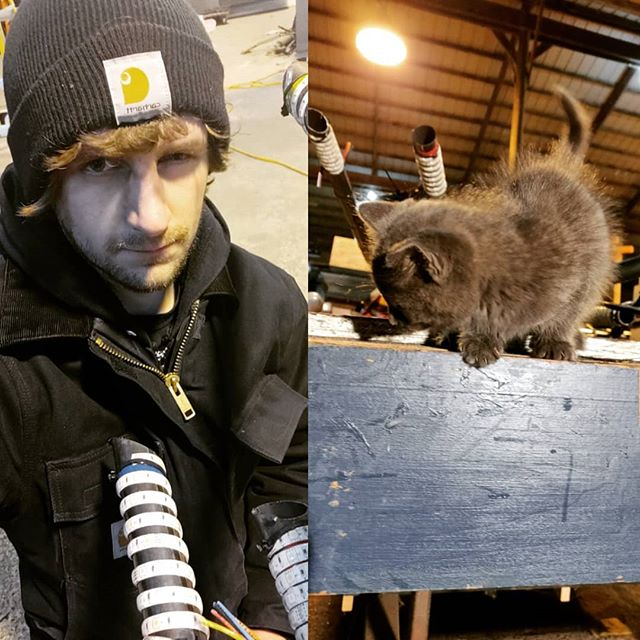 It's been real cold working in the shop but at least I made a friend . . . #theatre #theater #theatrelighting #stagelighting #productionlife #led #ledtape #lightingdesign #lightingcats #catsofinstagram