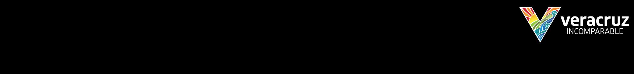 veracruz-logo.png