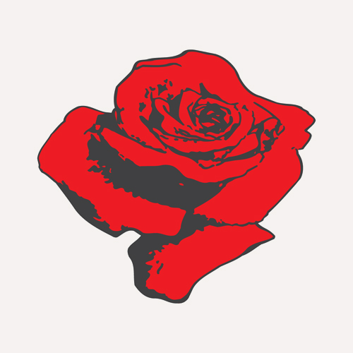 rose only w site color.jpg