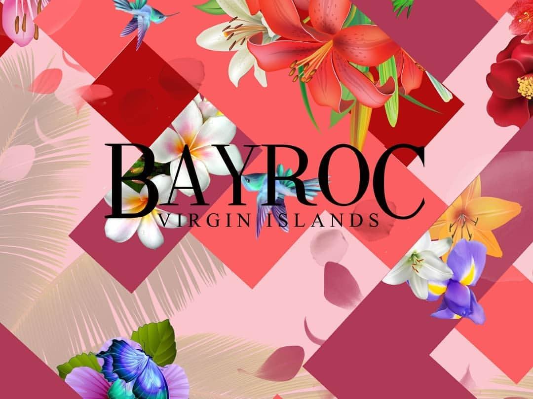 BAYROC new.jpg