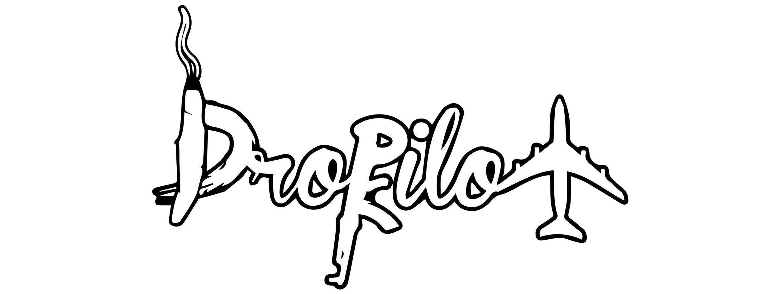 dropilot logo.jpg