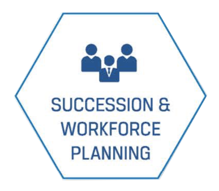 succession and workforce planning hex clean.png