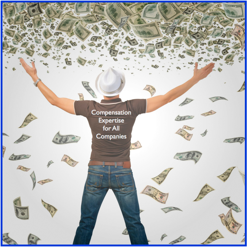 Small Companies Deserve Compensation Excellence -