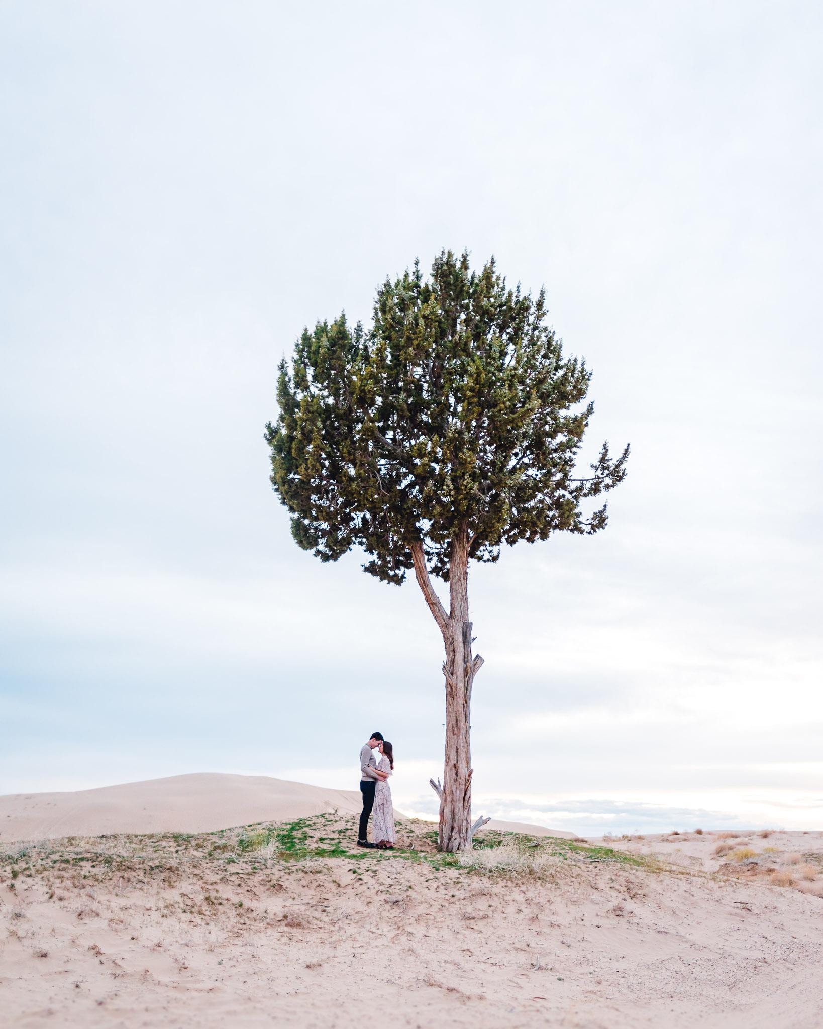 Tessa & Seth Engagemnts-71.jpg