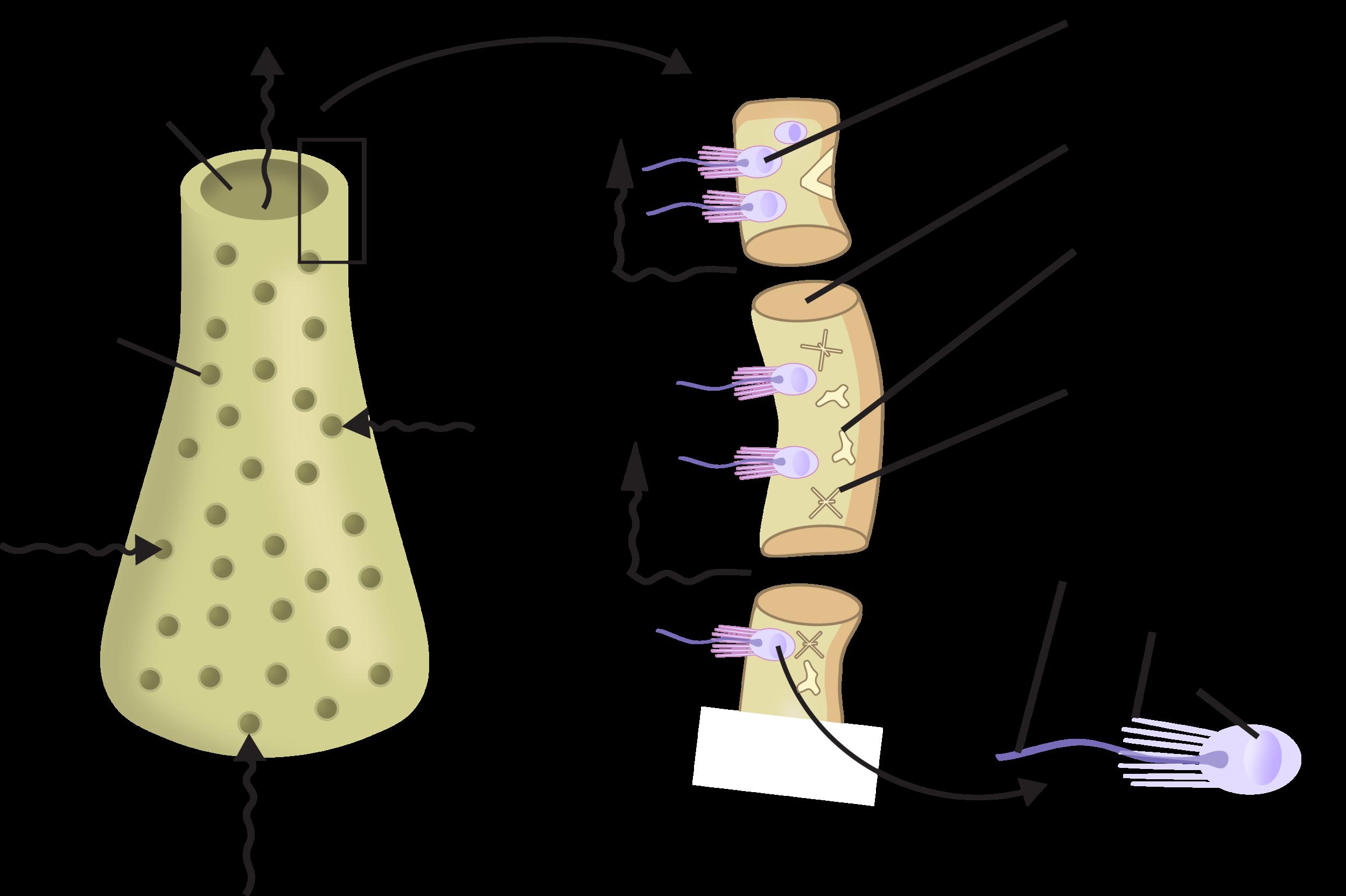figure 4.2.png