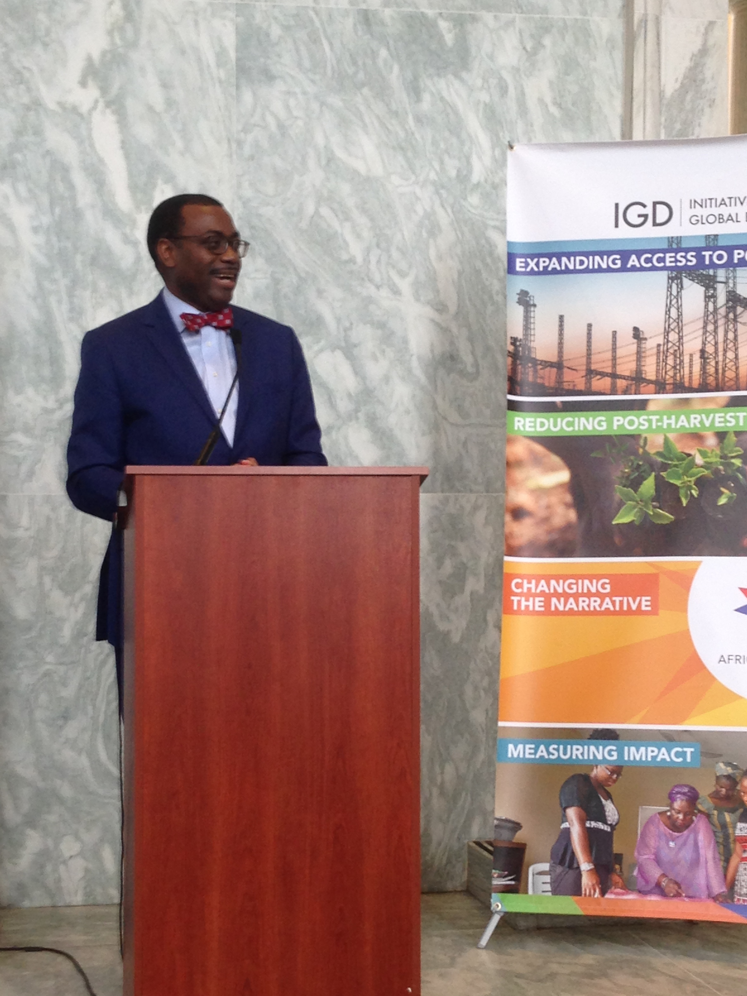 The Hon. Akinwumi Adesina speaking at the networking reception 04/20/17
