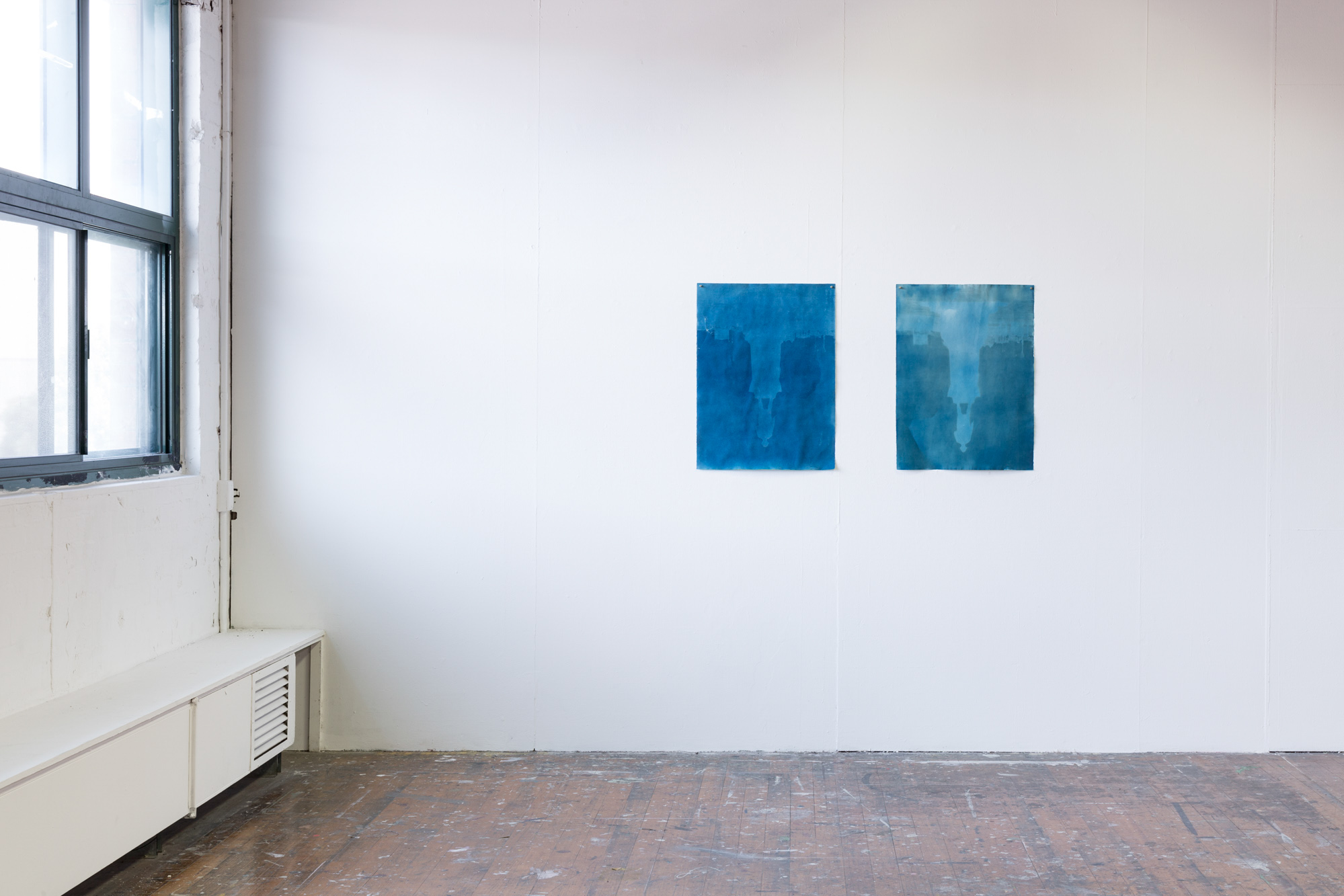 Unlearning Cook, Part Four, 2016. 2 Cyanotypes, each 56 x 75cm.