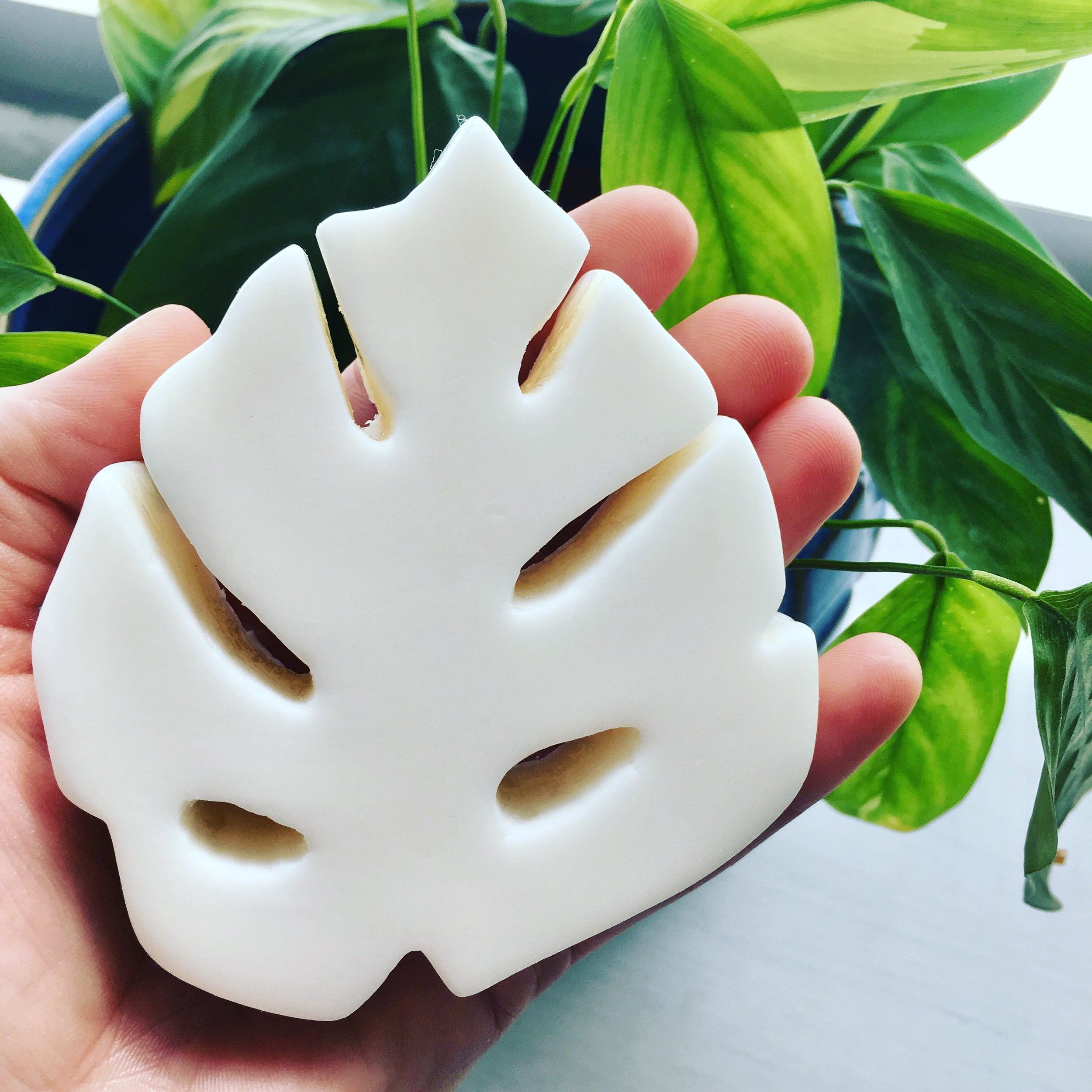 Inspired by Nature - Monstera Deliciosa soap, molded from a hand carved clay sculpture.
