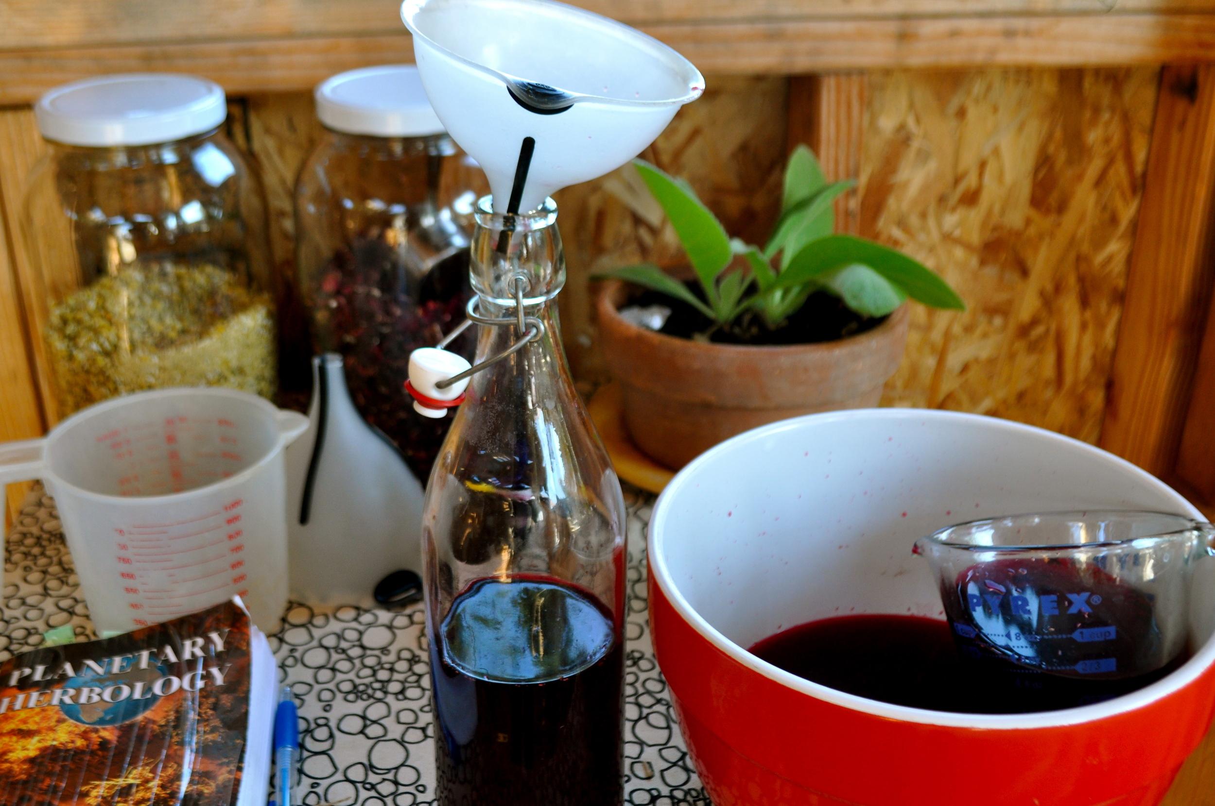 preparing hibiscus tonic