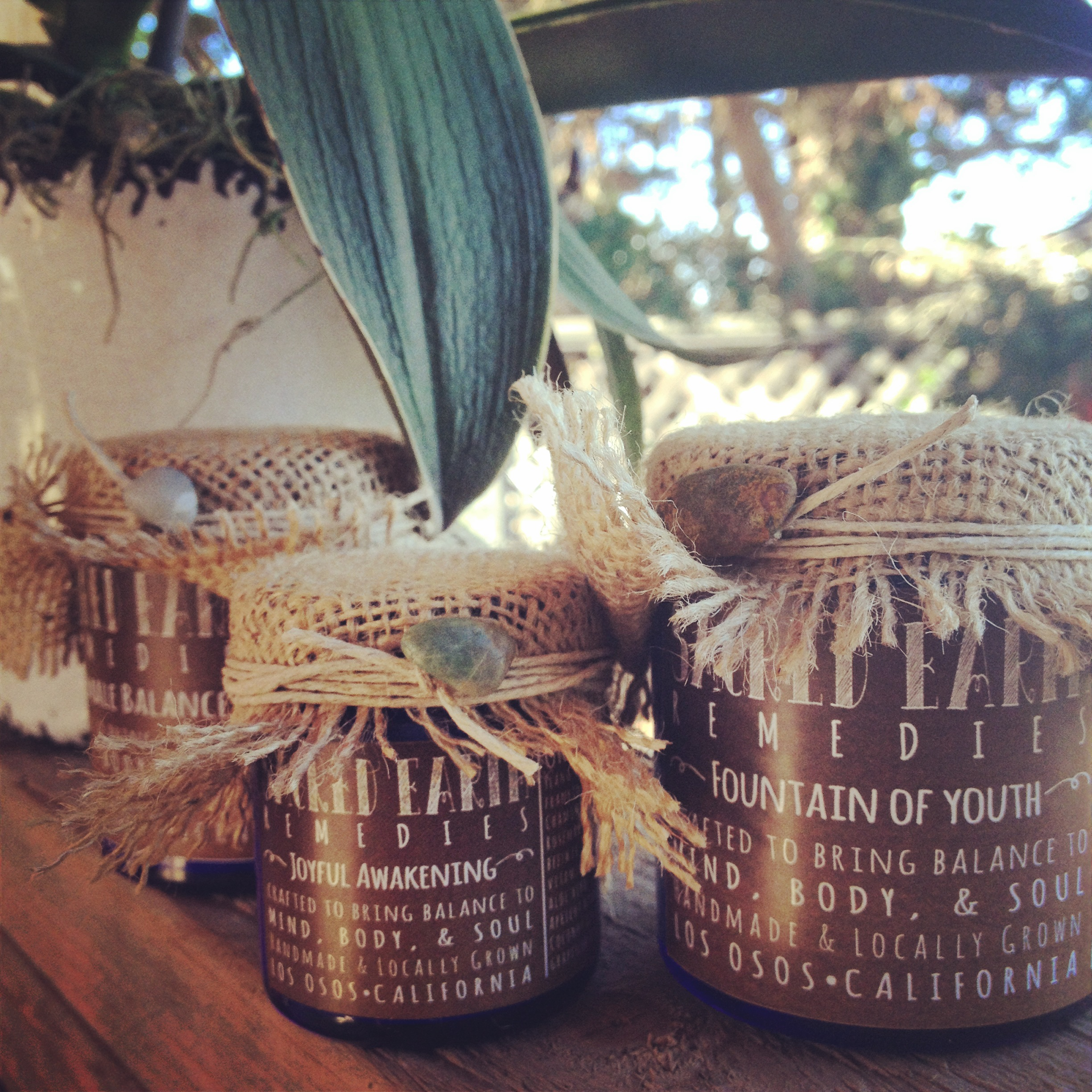 All natural, organic, handmade, & locally grown. Each cream is packed with the best ingredients your skin deserves.