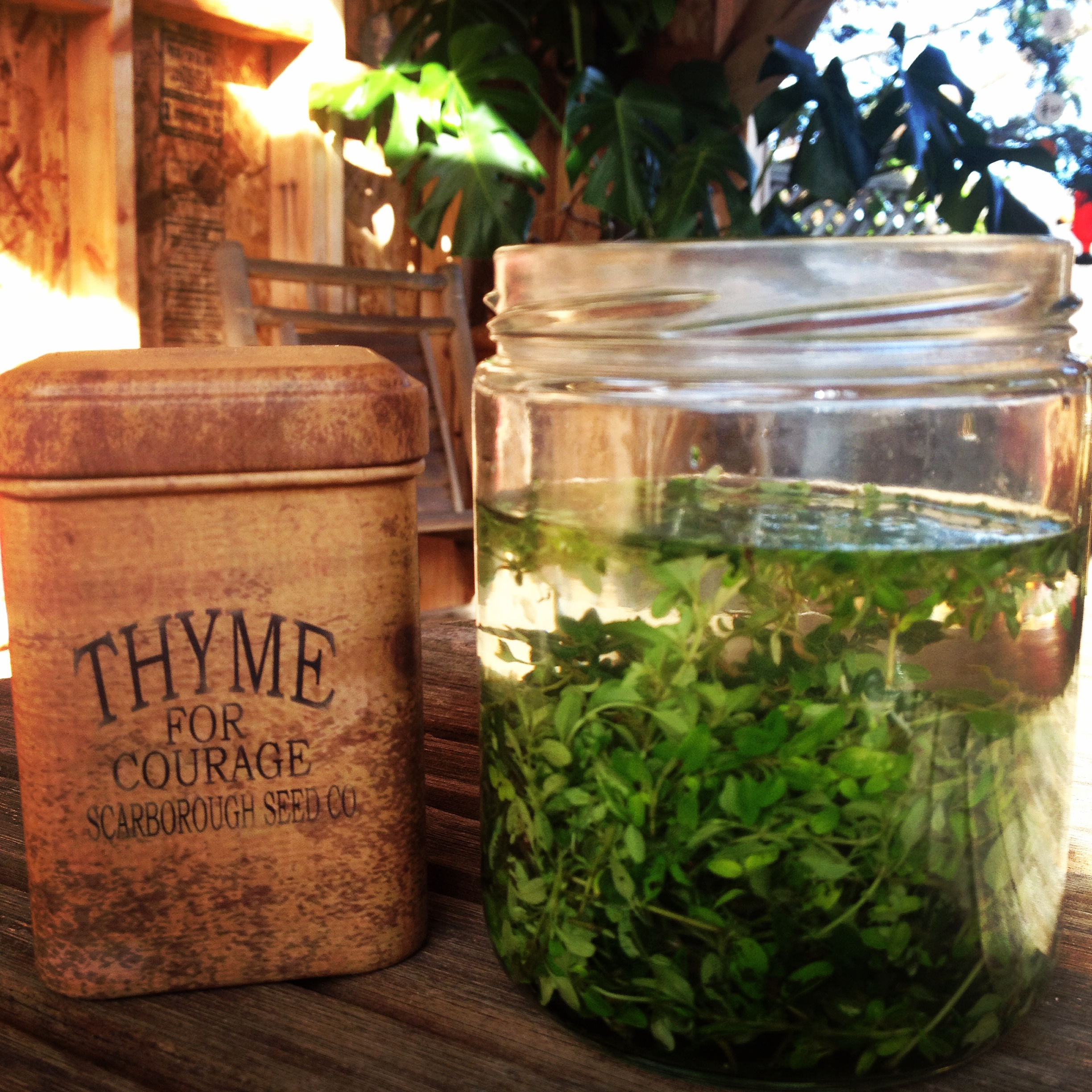 Preparing organicthyme tincture to add in every skin care product I make. It takes time to create with intentionand love.