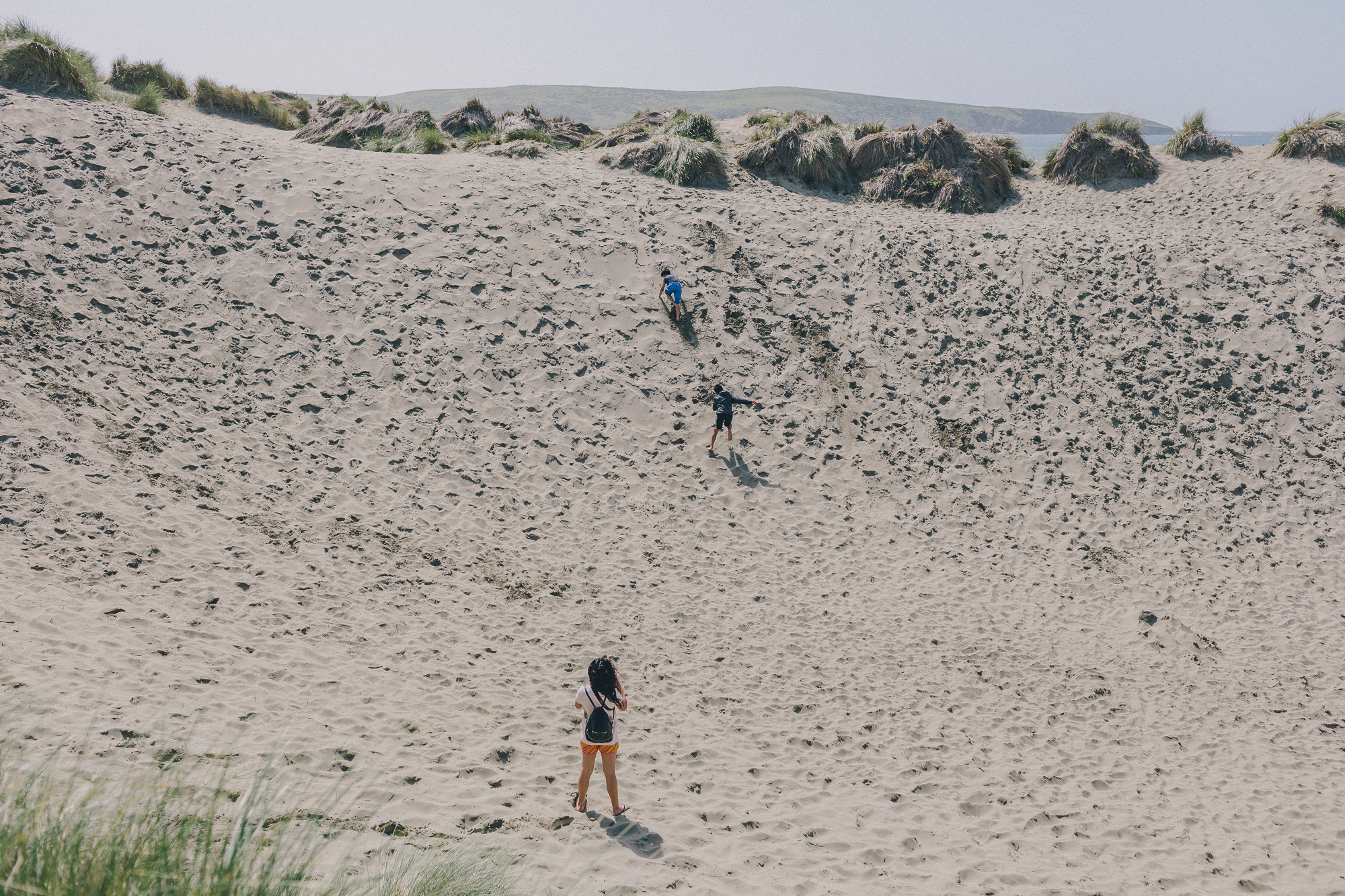Dillon Beach 2017 (16 of 69).jpg