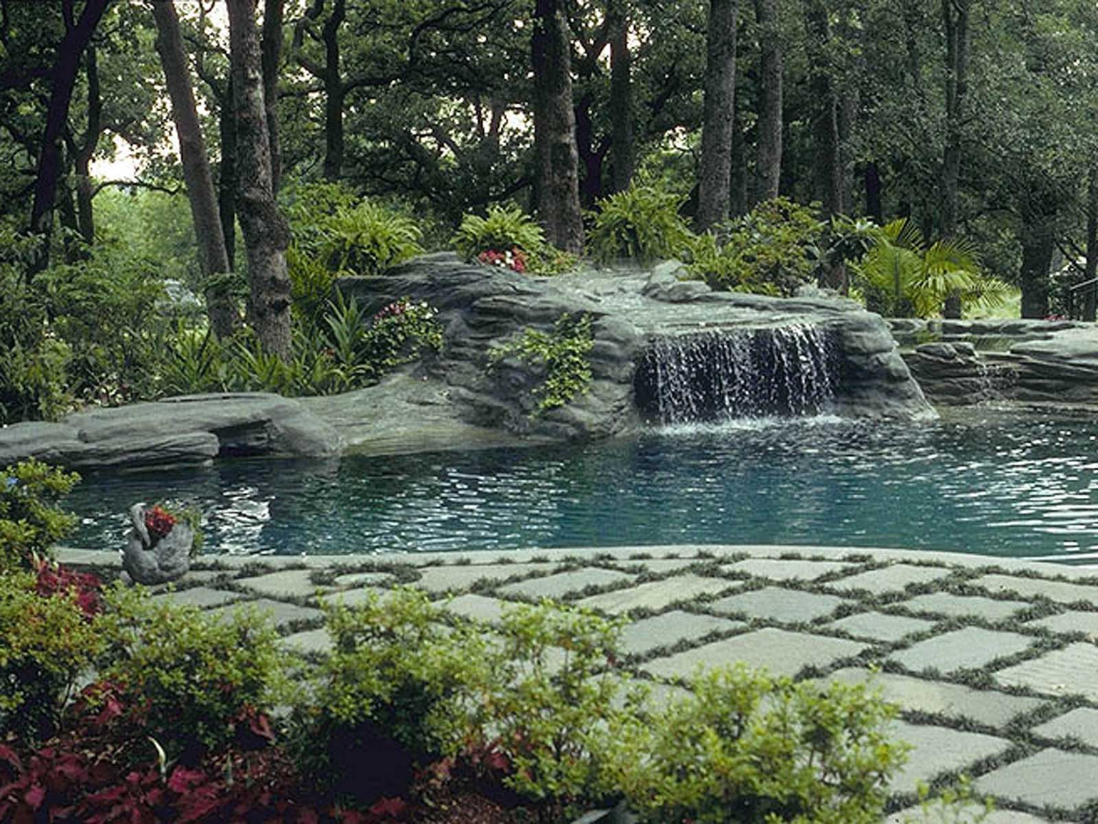 natural swimming pool design and water feature