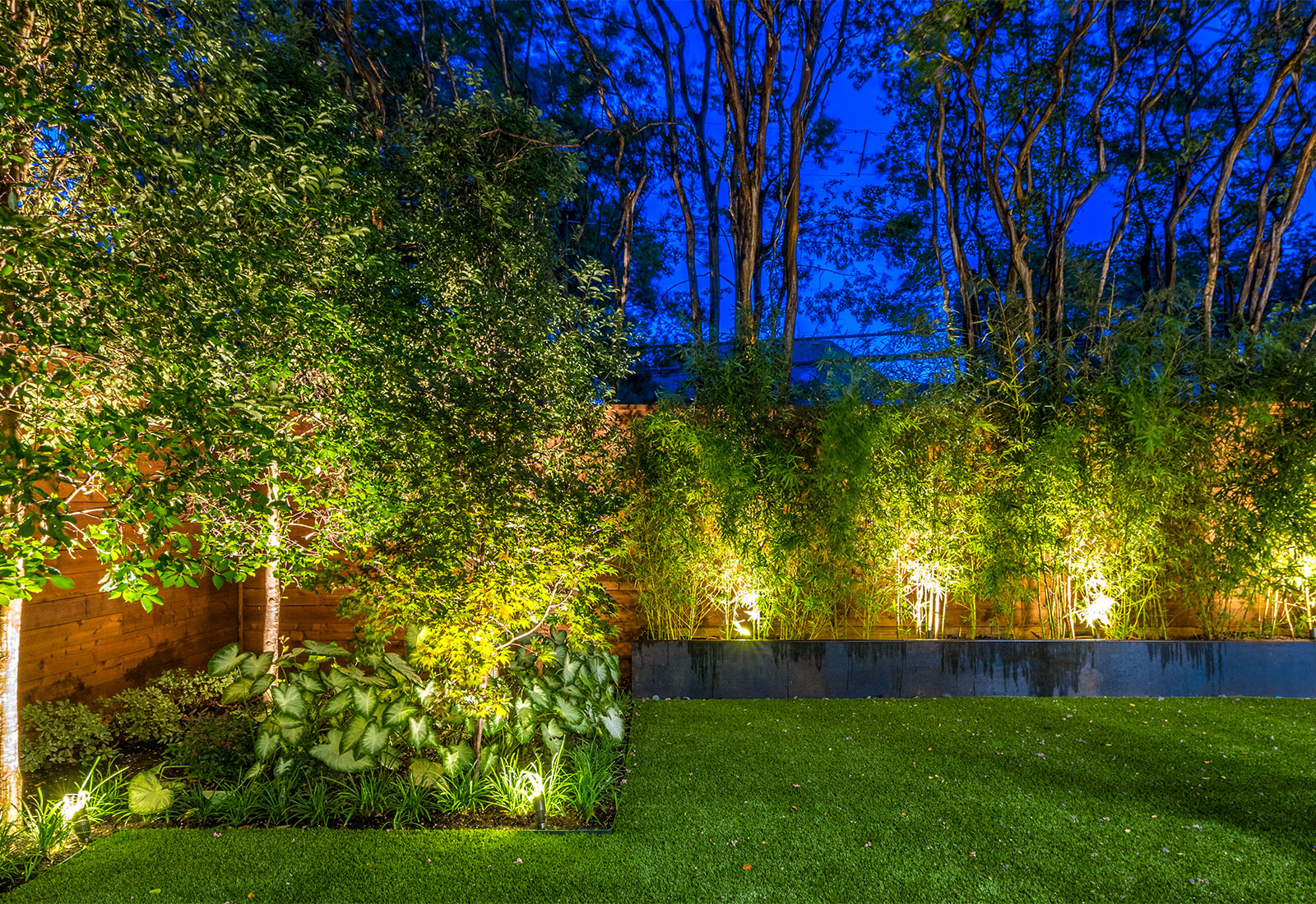 ddla-design-pemberton-modern-rear-landscape-lighting.jpg