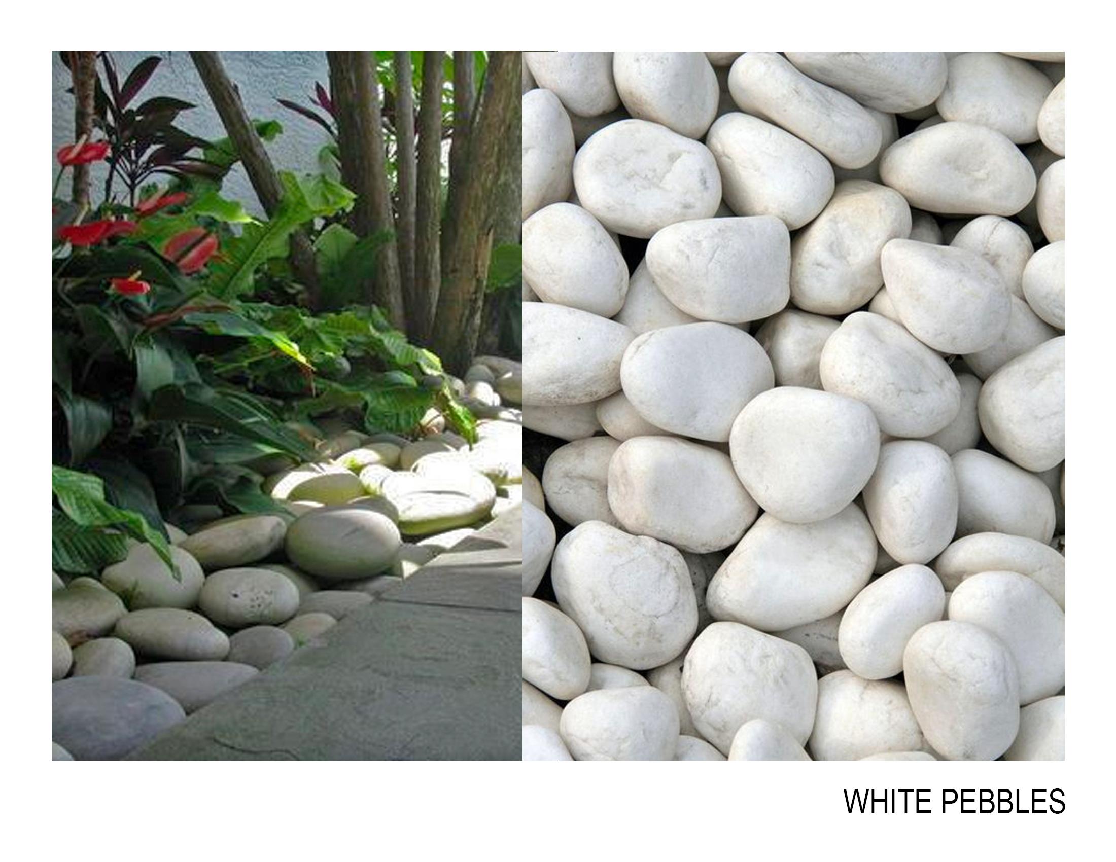 white pebbles.jpg