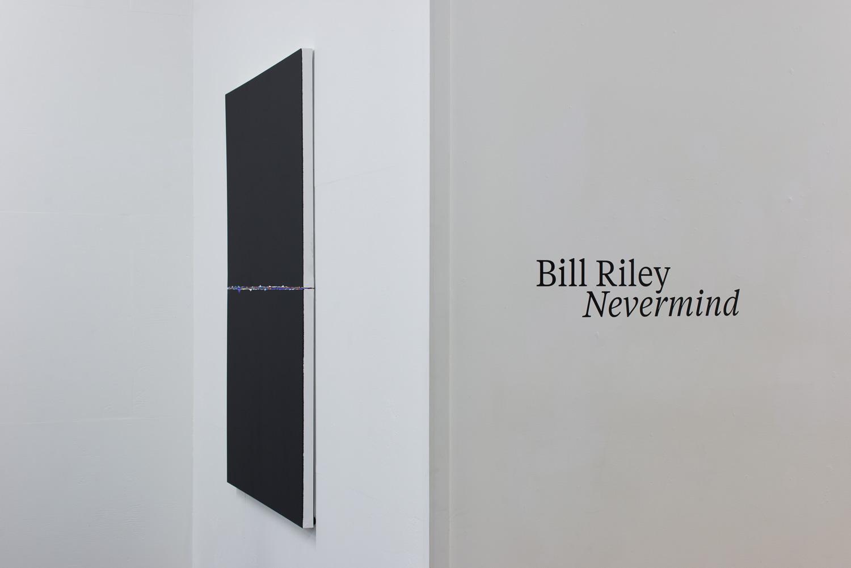 Bill Riley  Never mind  6-22 November 2015
