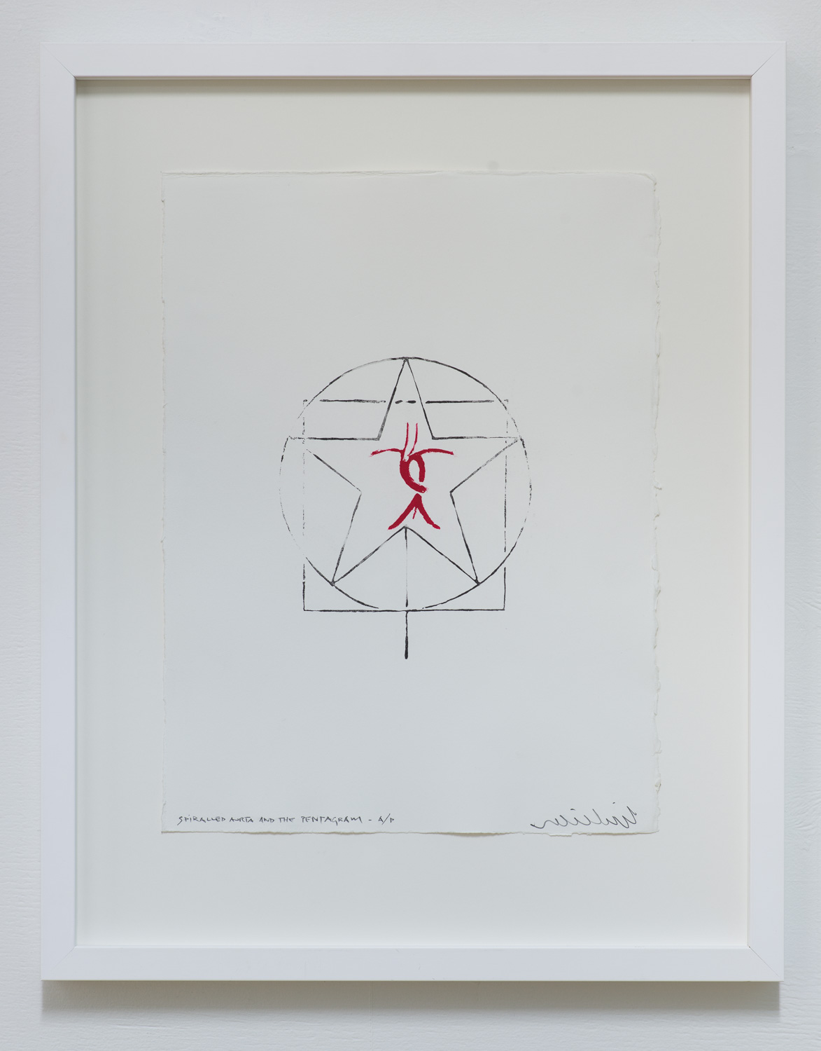 Spiralled Aorta and the Pentagram  2015  Printed from acid etched copper plates, Limited edition, 1/10 + AP  Frame: 540 x 430 x 35mm/ image: 375 x 280mm  Available