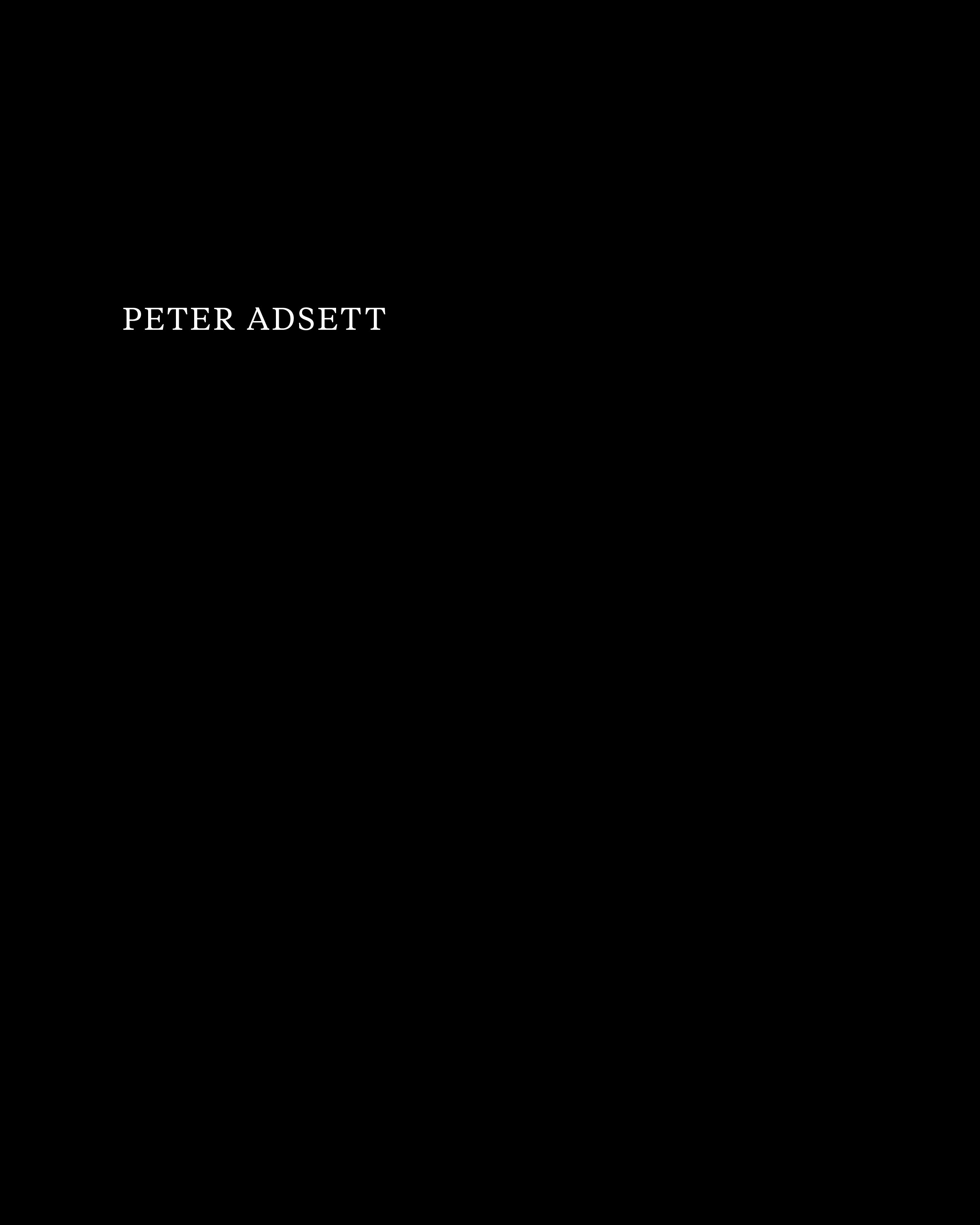 Peter Adsett, Painting's Back –Author: Mary Alice Lee